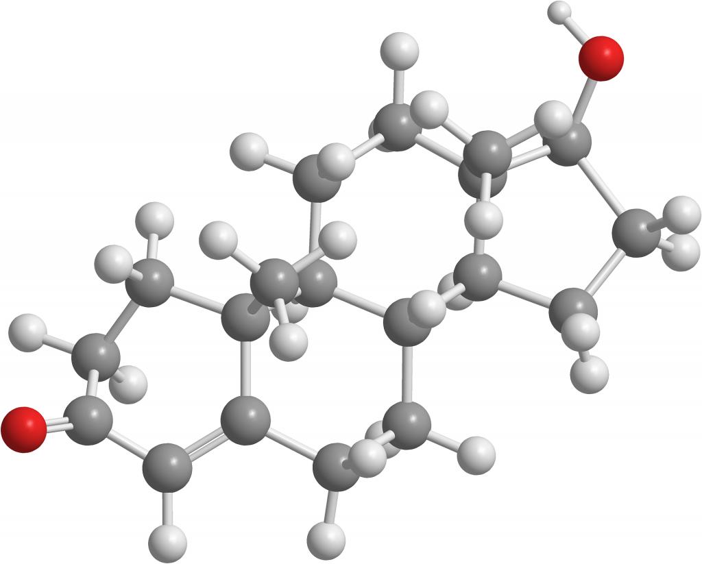 Testosterone: ormone fondamentale per la crescita muscolare. E' enorme la differenza di produzione dello stesso tra uomo e donna